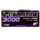 IRON SUPPLEMENTS NEW L-CARNITINE + GUARANA + ARGININE 10 ML